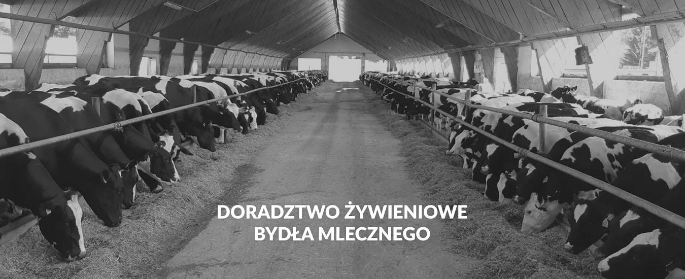 01-doradztwo_zywieniowe_bydla_mlecznego_bw